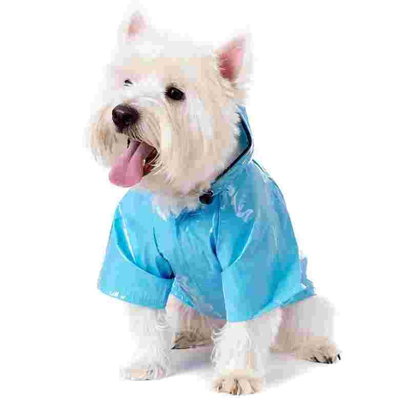 dog-raincoat.jpg