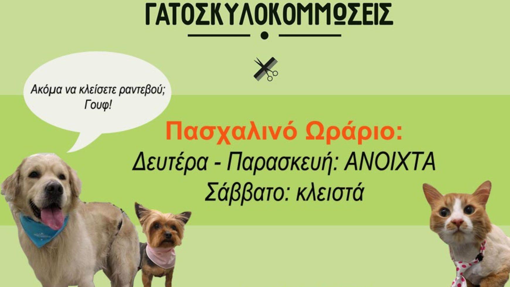 Πασχαλινό Ωράριο – Κομμωτήριο Σκύλου και Γάτας, Αθήνα